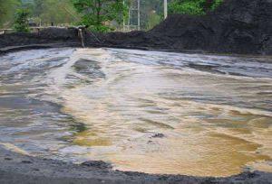 Hồ Ba Bể có nguy cơ bị biến mất