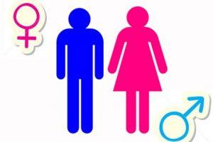 Hóa chất gây biến đổi giới tính