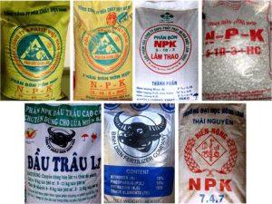 Năm 2018 Supe Lâm Thao xuất khẩu 35.862 tấn phân bón